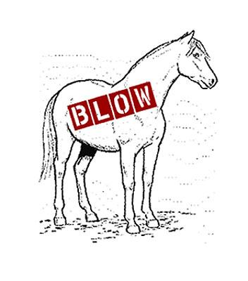 Blow Pony has become one of the most popular queer nights in town